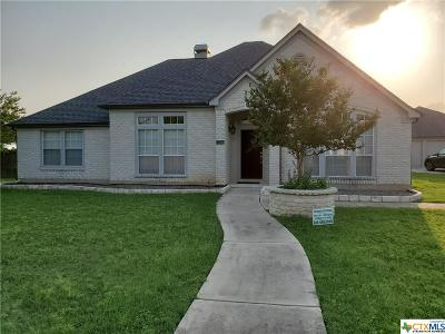 Seguin Single Family Home For Sale: 324 Las Brisas Boulevard