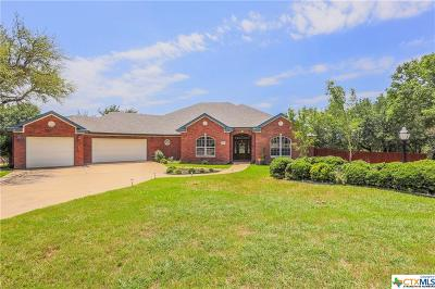 Temple, Belton Single Family Home For Sale: 4099 Lago Vista Drive