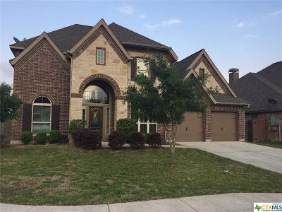 Seguin Single Family Home For Sale: 3067 Mustang Meadow