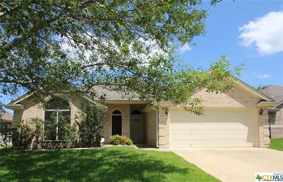 Harker Heights Single Family Home For Sale: 2007 Stonehenge Drive
