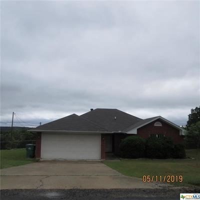 Killeen Single Family Home For Sale: 495 Lakeview Drive