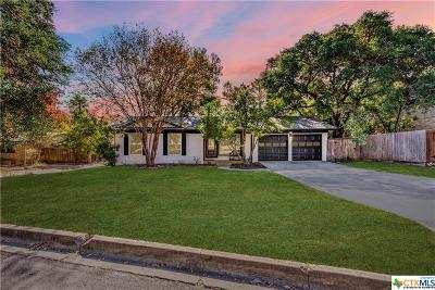 San Marcos Single Family Home For Sale: 119 Ridgeway Drive
