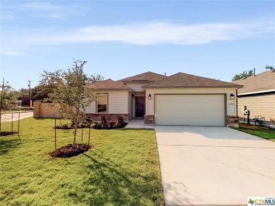 San Antonio Single Family Home For Sale: 6103 Rio Olmos Pass
