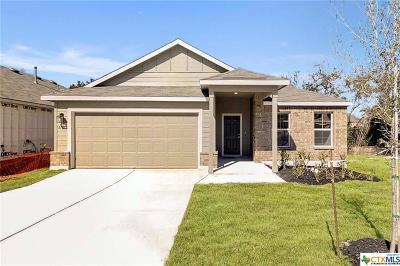 San Antonio Single Family Home For Sale: 6107 Rio Olmos Pass