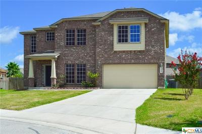 New Braunfels Single Family Home For Sale: 1127 Sandhill Crane