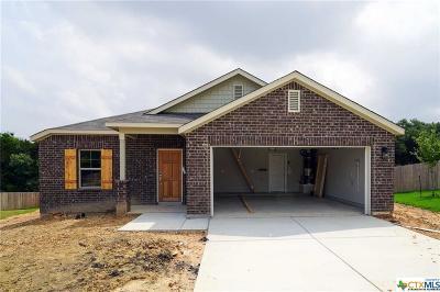 San Antonio Single Family Home For Sale: 6118 Rio Olmos Pass