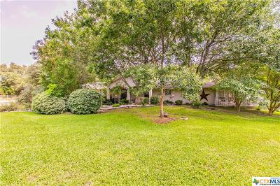 Belton Single Family Home For Sale: 888 Shanklin Road