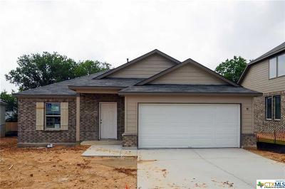 San Antonio Single Family Home For Sale: 6234 Fox Peak Drive