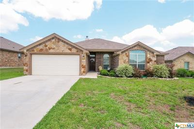 Temple Single Family Home For Sale: 8312 Salt Mill Hollow Drive
