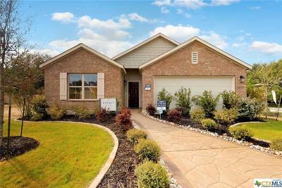 San Antonio Single Family Home For Sale: 16519 Paso Rio Creek