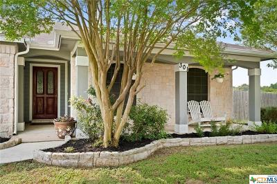 Kyle Single Family Home For Sale: 301 Quail Meadow Drive