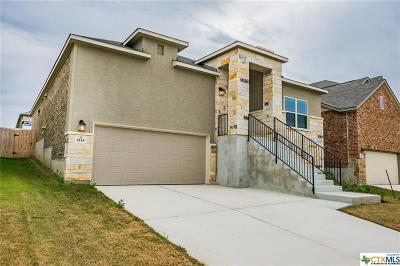 San Antonio Single Family Home For Sale: 6114 Rio Piedra Drive