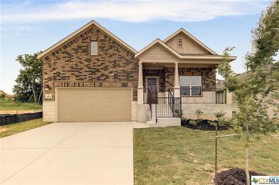San Antonio Single Family Home For Sale: 16431 Paso Rio Creek