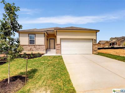 San Antonio Single Family Home For Sale: 16414 Paso Rio Creek