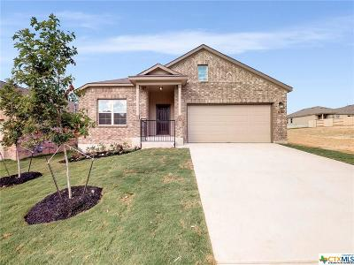 Single Family Home For Sale: 16426 Paso Rio Creek