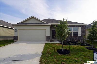 San Antonio Single Family Home For Sale: 10575 Pablo Way