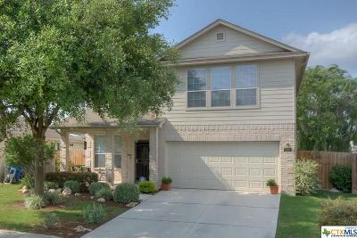Single Family Home For Sale: 228 Roadrunner Avenue