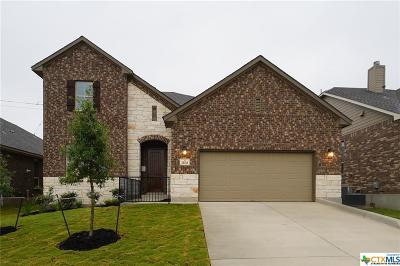 San Antonio Single Family Home For Sale: 21411 Ravello Oaks