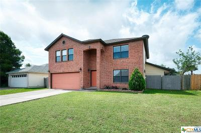 Round Rock Single Family Home For Sale: 1211 Pike Path