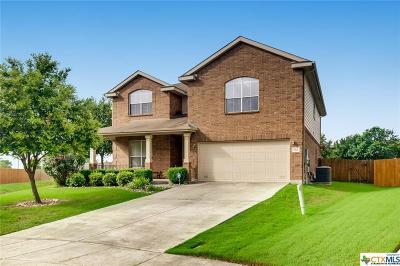 Cibolo Single Family Home For Sale: 725 Penick Way