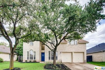 Round Rock Single Family Home For Sale: 1318 Terra Street