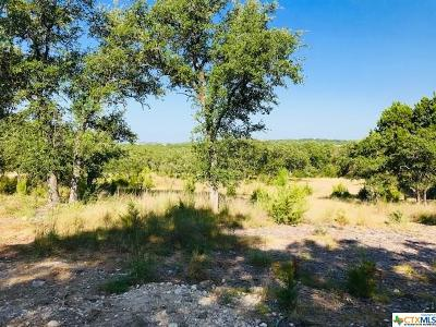 Canyon Lake Single Family Home For Sale: 1118 Hidden Forest