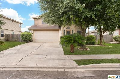 New Braunfels Single Family Home For Sale: 357 Tanager Drive