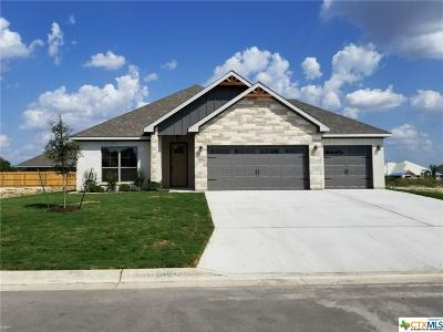 Temple TX Single Family Home For Sale: $250,900