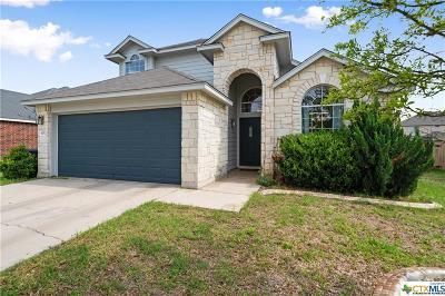 Killeen Single Family Home For Sale: 4207 Auburn Drive