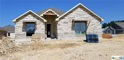 Temple TX Single Family Home For Sale: $241,900