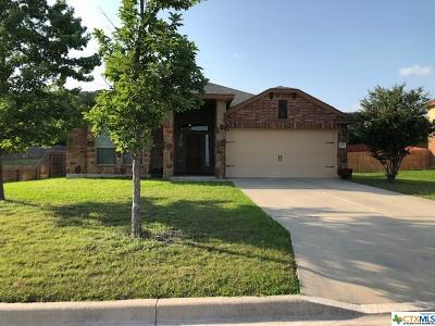 Harker Heights Single Family Home For Sale: 3905 Scenic Trail Drive
