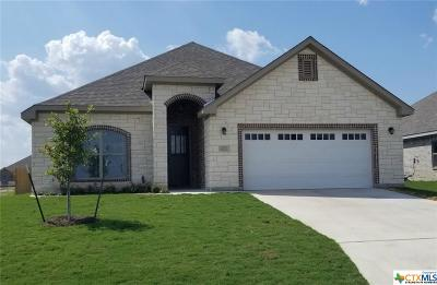 Temple TX Single Family Home For Sale: $254,500