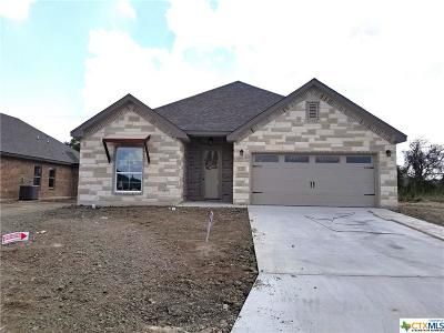 Temple TX Single Family Home For Sale: $272,900