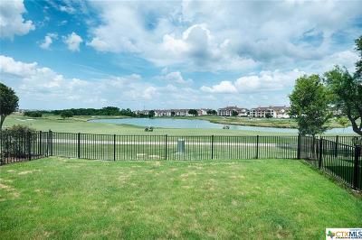 Hutto Single Family Home For Sale: 250 Danish Drive