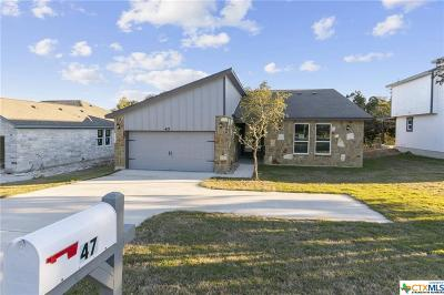 Wimberley Single Family Home For Sale: 47 Champion Circle
