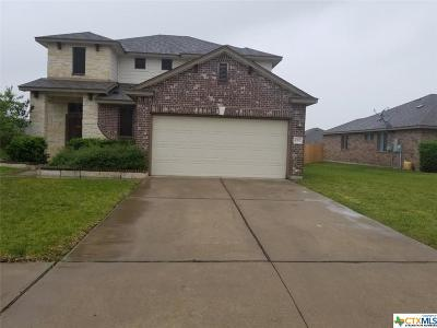 Killeen Single Family Home For Sale: 6707 Bayberry Drive