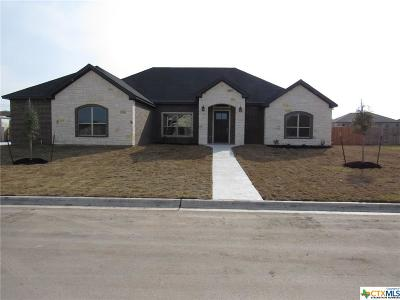 Salado Single Family Home For Sale: 4313 Big Brooke Dr. Drive