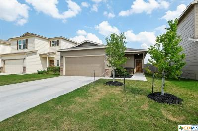 New Braunfels Single Family Home For Sale: 119 Elderberry