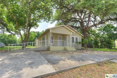 Seguin Single Family Home For Sale: 406 Dolle Avenue