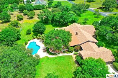 Georgetown Single Family Home For Sale: 221 Skyline Road