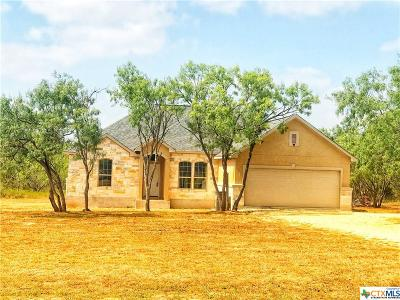 Seguin Single Family Home For Sale: 4139 Jakes Colony Road