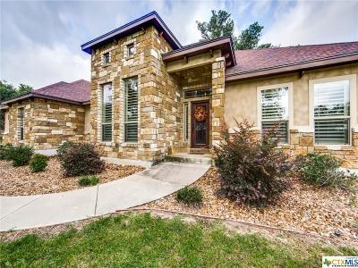 La Vernia Single Family Home For Sale: 104 Copper Ridge Drive