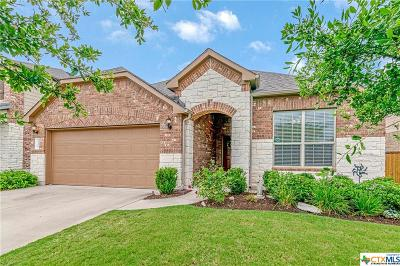 Round Rock Single Family Home For Sale: 3409 De Torres Circle