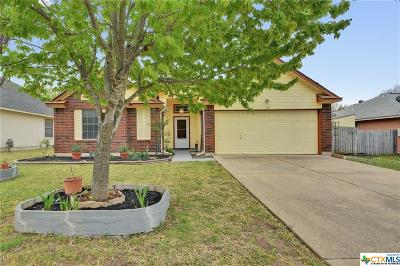 Williamson County Single Family Home For Sale: 103 Evergreen Circle