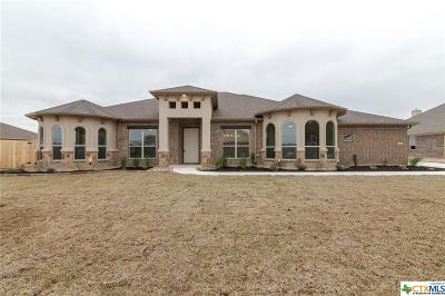 Salado Single Family Home For Sale: 8562 Spring Creek Loop