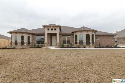 Salado Single Family Home For Sale: 8562 Spring Creek Loop