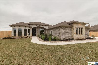 Salado Single Family Home For Sale: 8568 Spring Creek Loop