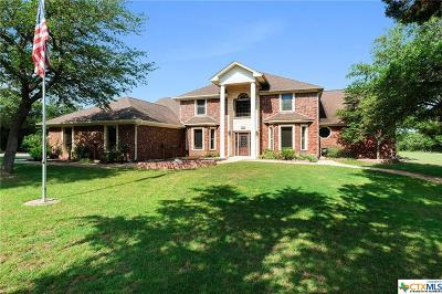 Salado Single Family Home For Sale: 9499 Live Oak Road