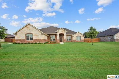 Nolanville Single Family Home For Sale: 3038 Heritage Loop