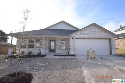 Killeen Single Family Home For Sale: 7607 Melanite Drive